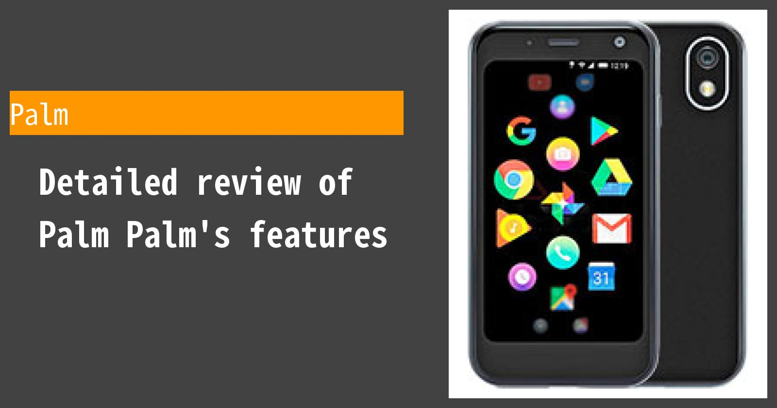 Detailed review of Palm Palm's features